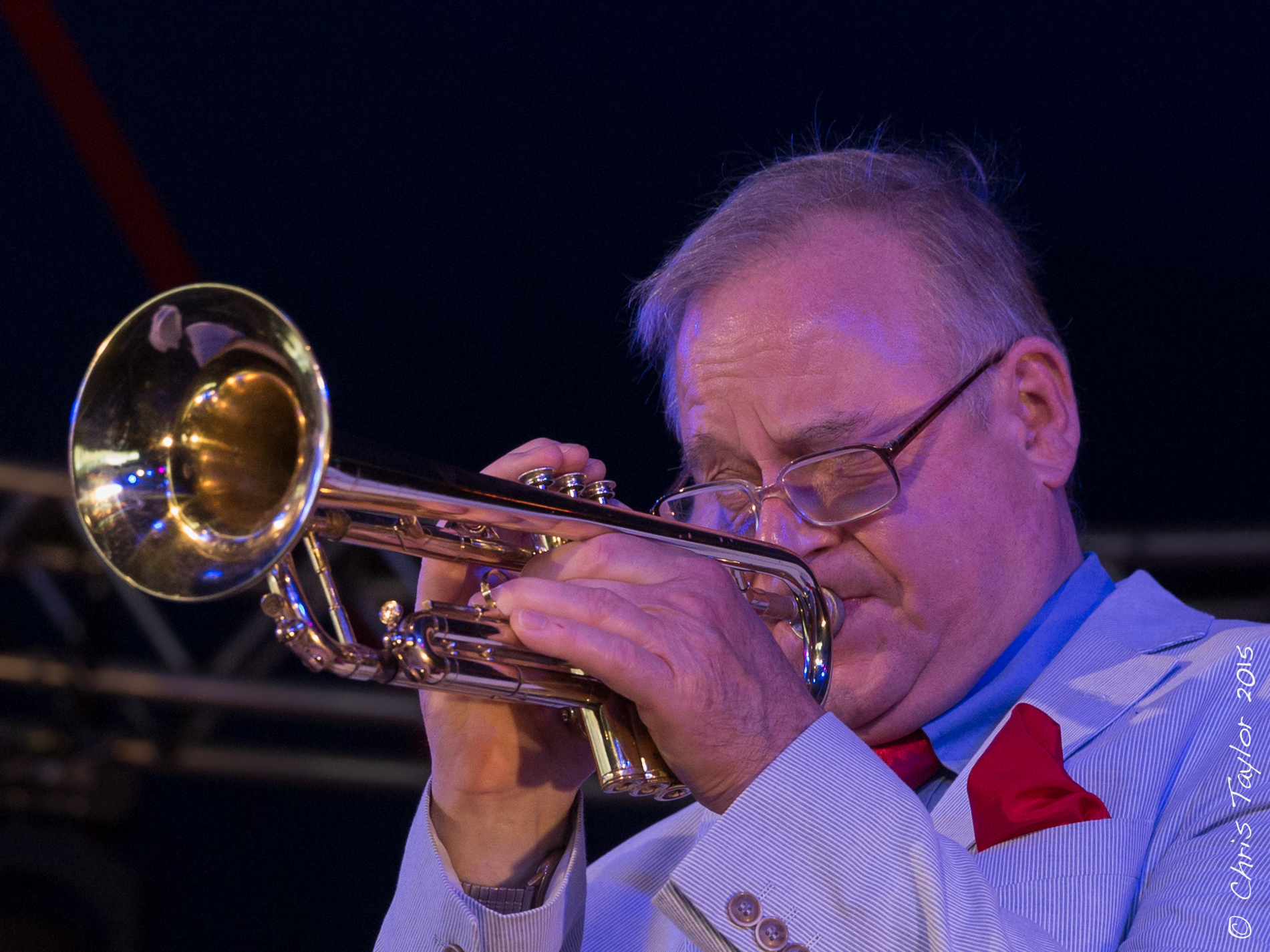 Ealing Jazz Festival 1st August 2015